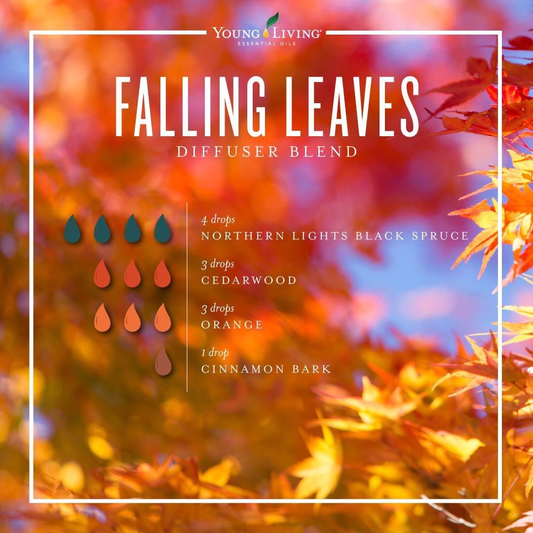 Fall Diffuser Blends \u2013 The Essential Creative Community