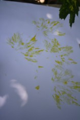 3leafpainting