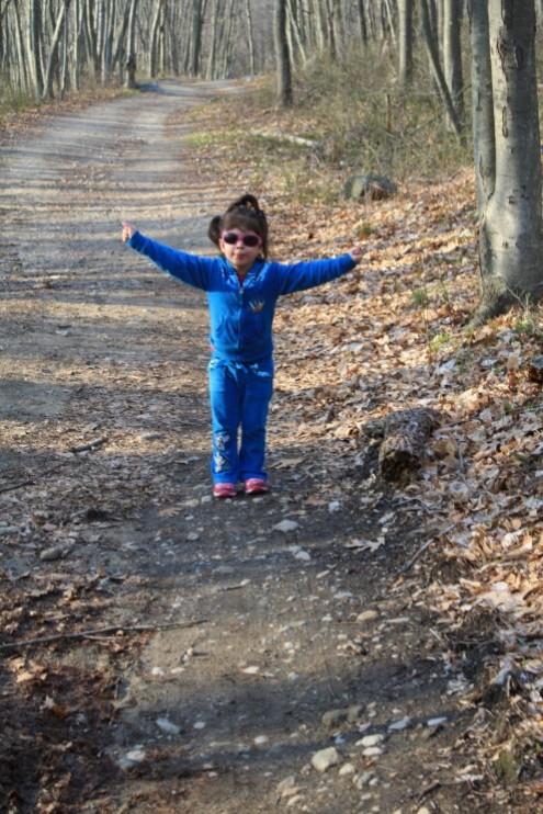 walkinginthewoods
