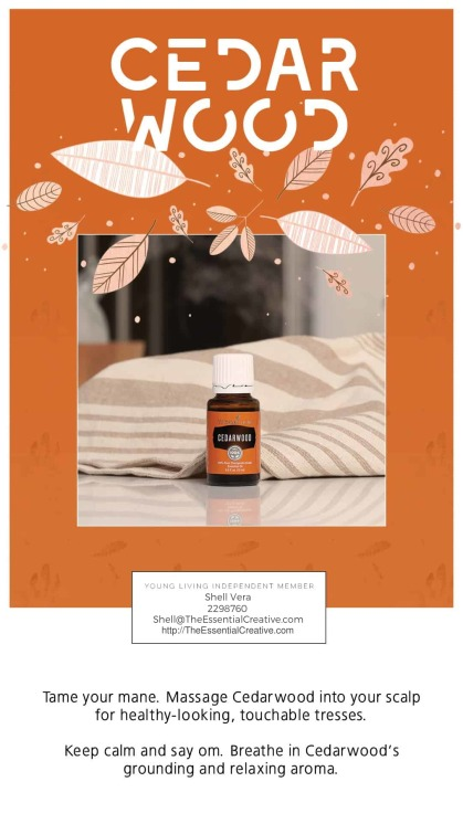 4.-October-2019-Promos-Cedarwood