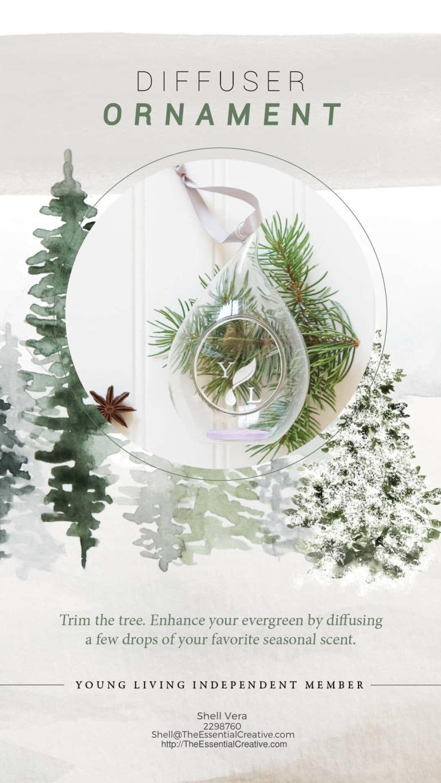 7-Diffuser-Ornament-Insta